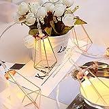 Hergon LED-Lichterkette, 10 LEDs, batteriebetrieben, Party-Licht, Hochzeit, Party, Zuhause, Garten, Schlafzimmer, Dekoration, Licht Lampe
