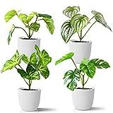 Kazeila Mini Indoor-Topfpflanzen,15 cm Kunstplastik-Kunstpflanze für dekoratives Haus / Büro / Schreibtisch (4 Pack)