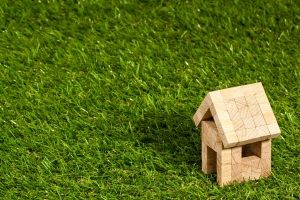Ökologisches Bauen – wie man durch eine Dachbegrünung das Raumklima verbessert