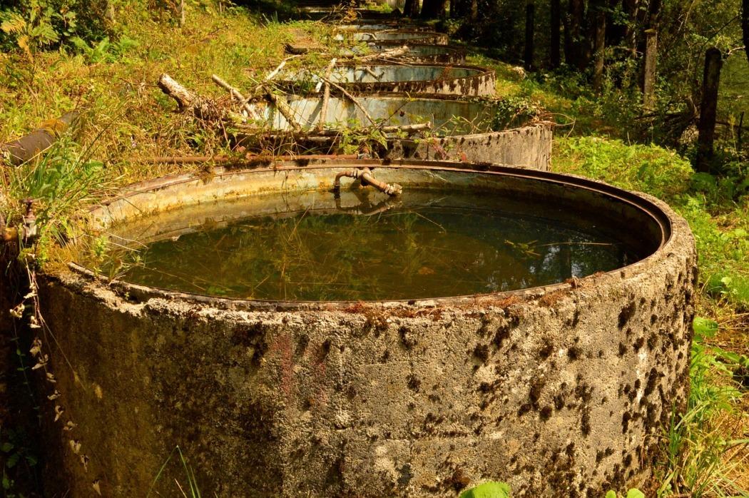 Regenwasser nutzen, Zisterne bauen