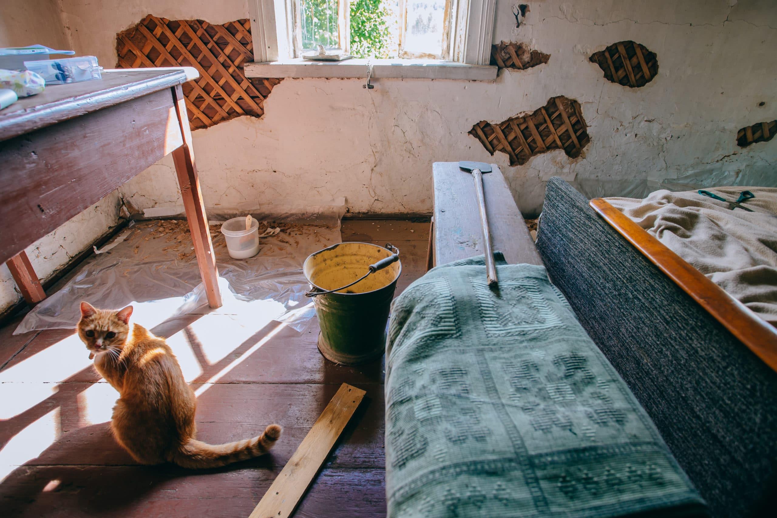 Bei Sanierungen und Modernisierungen ist oft eine Bautrocknung notwendig.