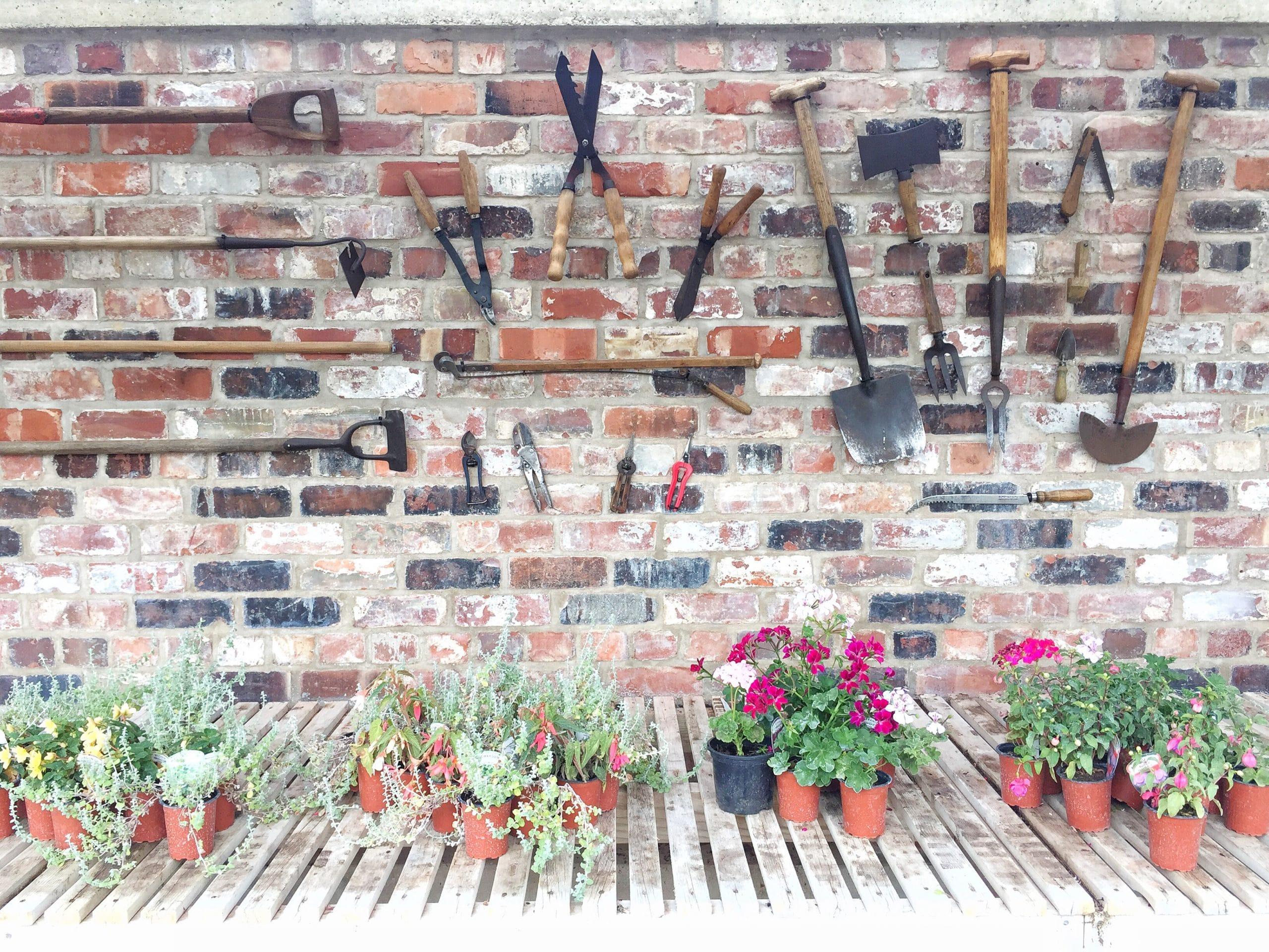 Eine urige Gartenmauer hat Charme. Foto: twenty20photos via Envato